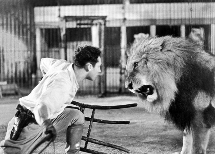 1-lion-tamer-1930s-granger