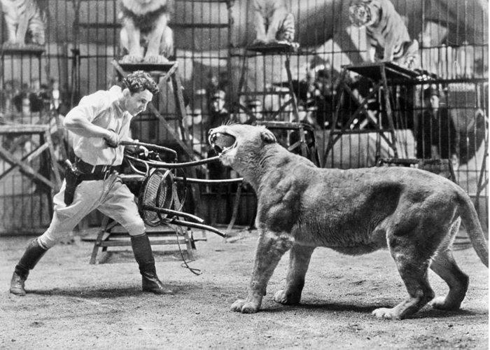 2-lion-tamer-1930s-granger
